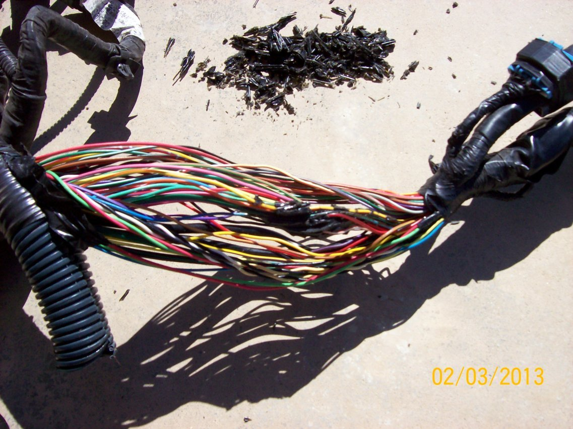 VQ35 Wiring in '03 SpecV Using '04 Maxima ECU on mustang gt wiring harness, m37 wiring harness, miata wiring harness, crown victoria wiring harness, vue wiring harness, pt cruiser wiring harness, tundra wiring harness, s2000 wiring harness, camry wiring harness, tahoe wiring harness, land cruiser wiring harness, grand marquis wiring harness, enclave wiring harness, crx wiring harness, fj cruiser wiring harness,